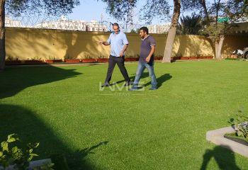 环境工程人造草坪